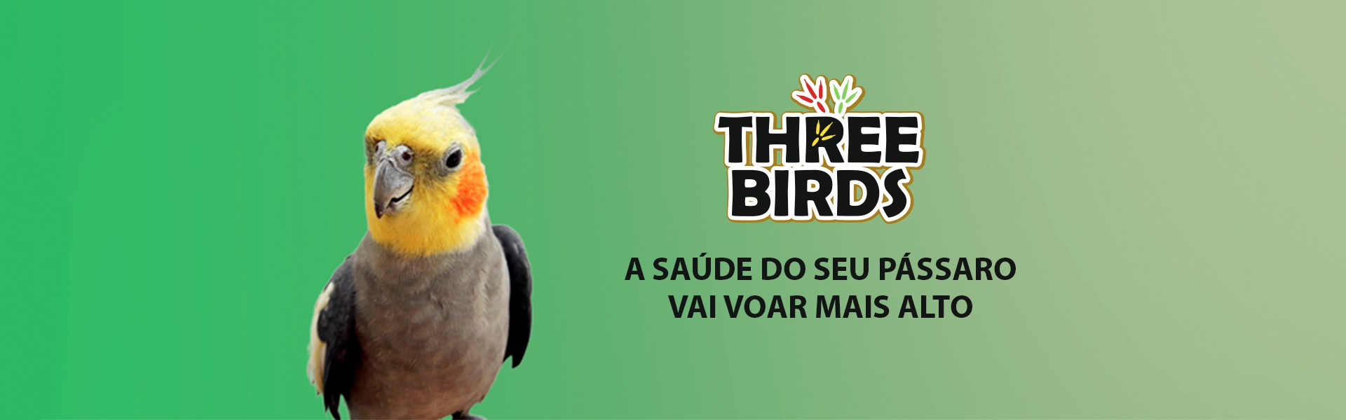 Topo Three Birds